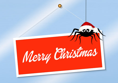 Merry Christmas sign with cartoon spider in Santa hat