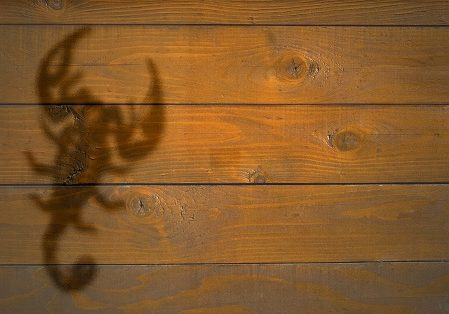 Sign of Scorpio on the wooden texture suitable for background